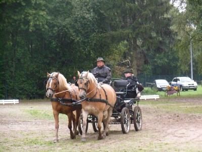 1.Fahrturnier in Nendorf